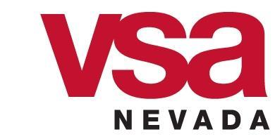 color VSA NV logo 2
